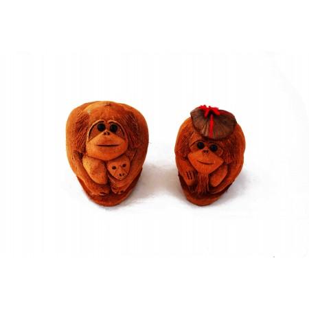 Małpa kokos kapelusz