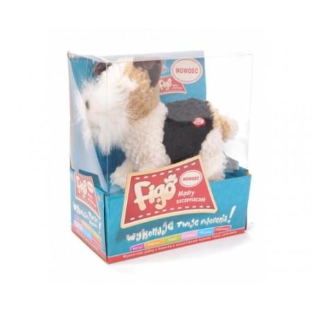 Pies Figo - Foxterier