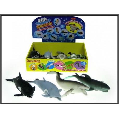Zwierzęta morskie miękkie