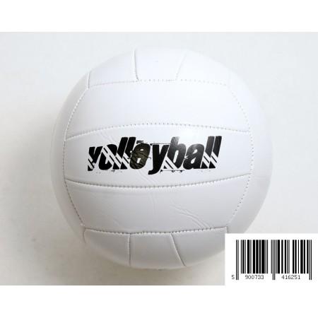 Piłka siatkowa