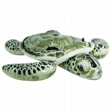 Żółw do pływania 57555